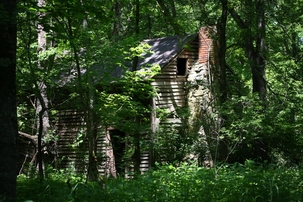 An old cabin in the woods.